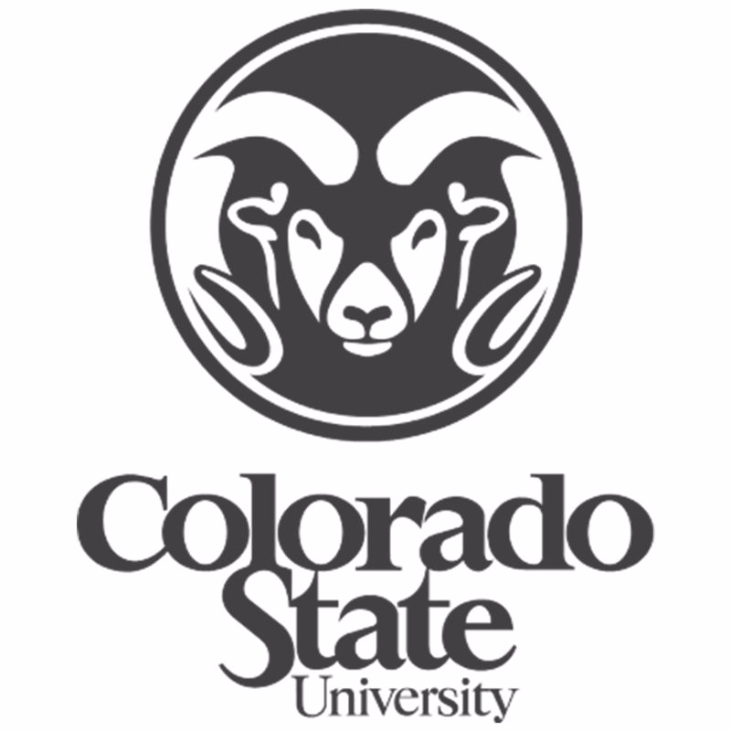 DI-Logo-CollegeSports-ColoradoStateUniversity