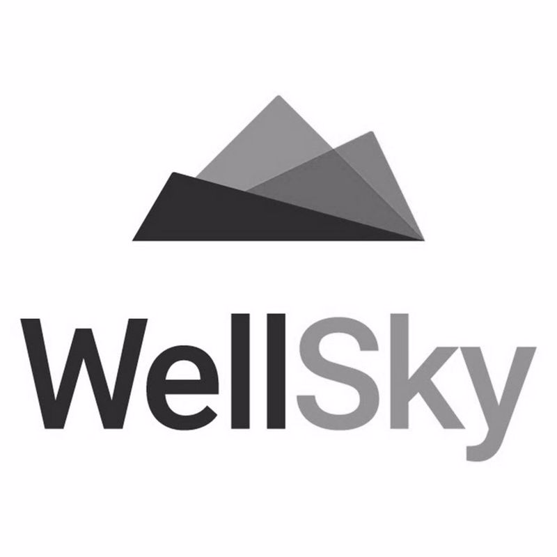 DI-Logo-Corporate-WellSky