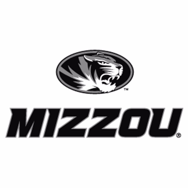 DI-Logo-HigherEducation-Mizzou